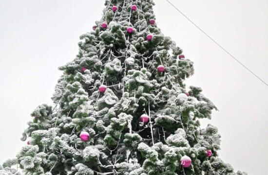 -Truskavets-for-christmas